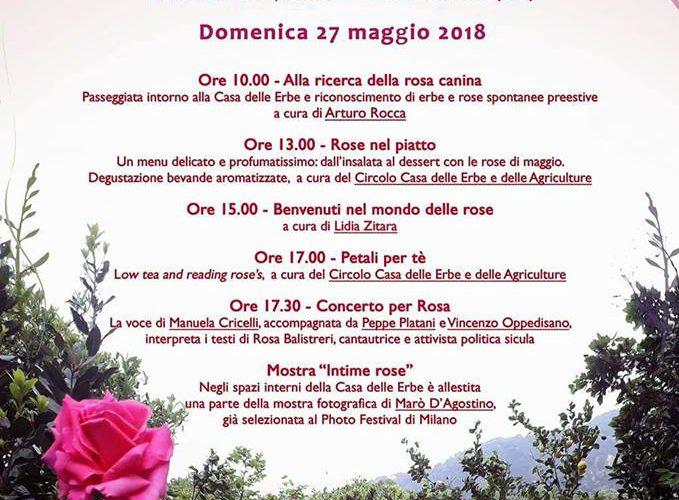 """Fragranze, visioni, colori, emozioni e sorprese alla Casa delle Erbe della Locride  con """"La festa delle rose"""""""